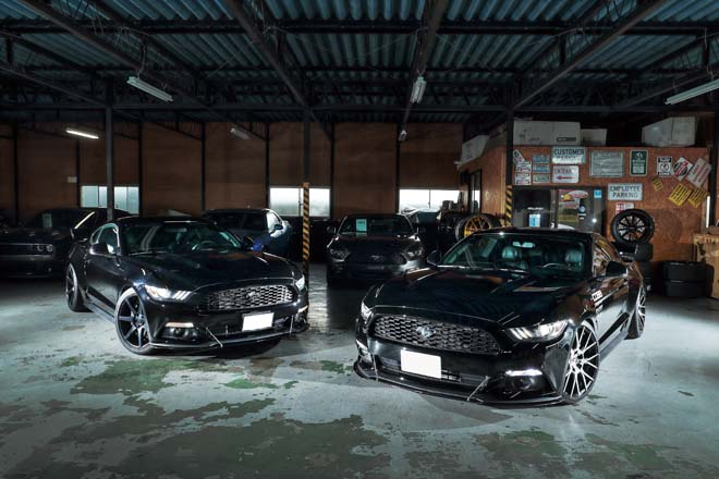 2015y FORD MUSTANG 50years EDITION、オールインポート、COBBチューニング