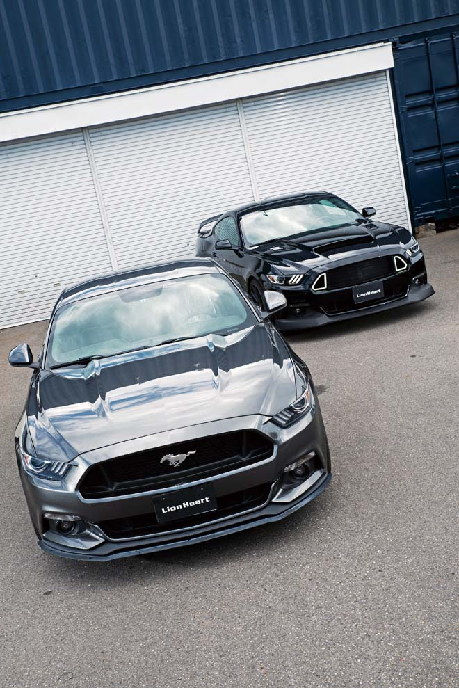 2015y FORD MUSTANG 50years EDITION、2016y FORD MUSTANG