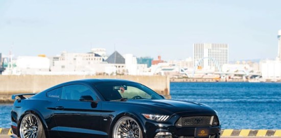 MR.AKIRA & FORD MUSTANG
