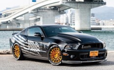 2012y フォードシェルビーGT500SVT、2012y FORD SHELBY GT500 SVT