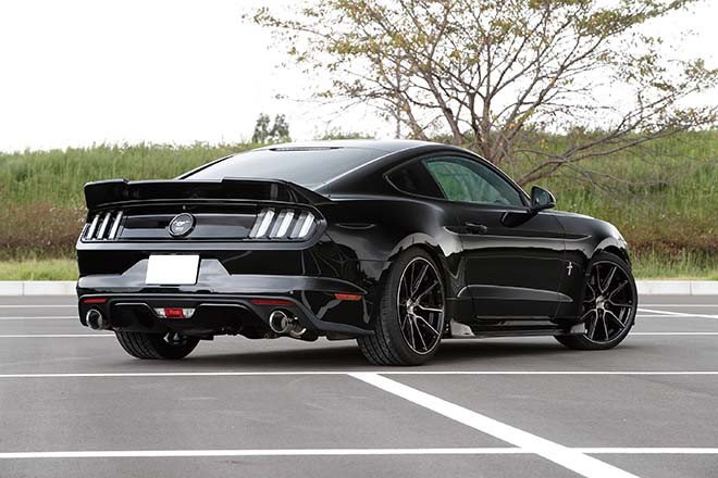 2015 FORD MUSTANG 50YEARS EDITION